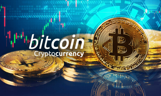 What is halving in cryptocurrencies, and which cryptocurrencies will be halved in 2020?