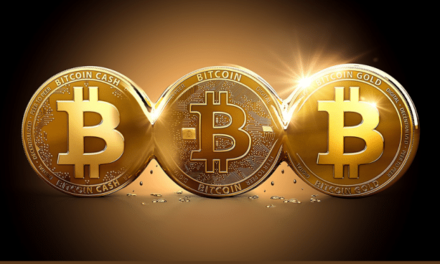 Understanding the differences between Bitcoin, Bitcoin Cash, and Bitcoin Gold
