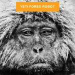 Yeti Forex Robot: Everything You Need to Know