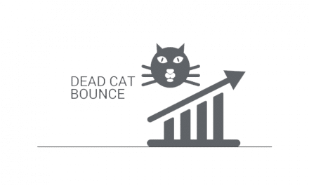 Understanding the Dead Cat Bounce in Trading
