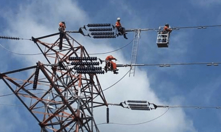 Chinese State Grid Unveils Plans to Meet Xi's Emission Targets