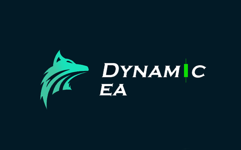 Dynamic EA Review: Important to Know Before Investing