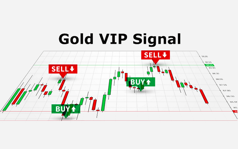 Gold VIP Signal Review:  Everything You Need To Know