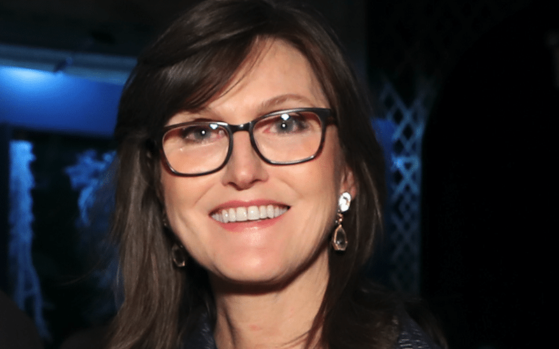 Regulators Will Warm Up To Bitcoin In Time, Says Cathie Wood