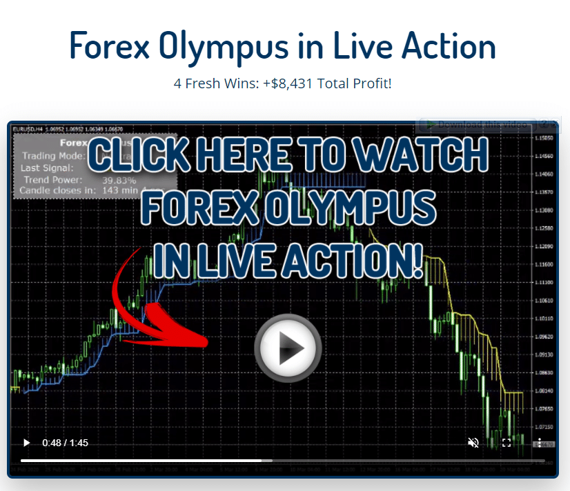 Forex Olympus in Live action