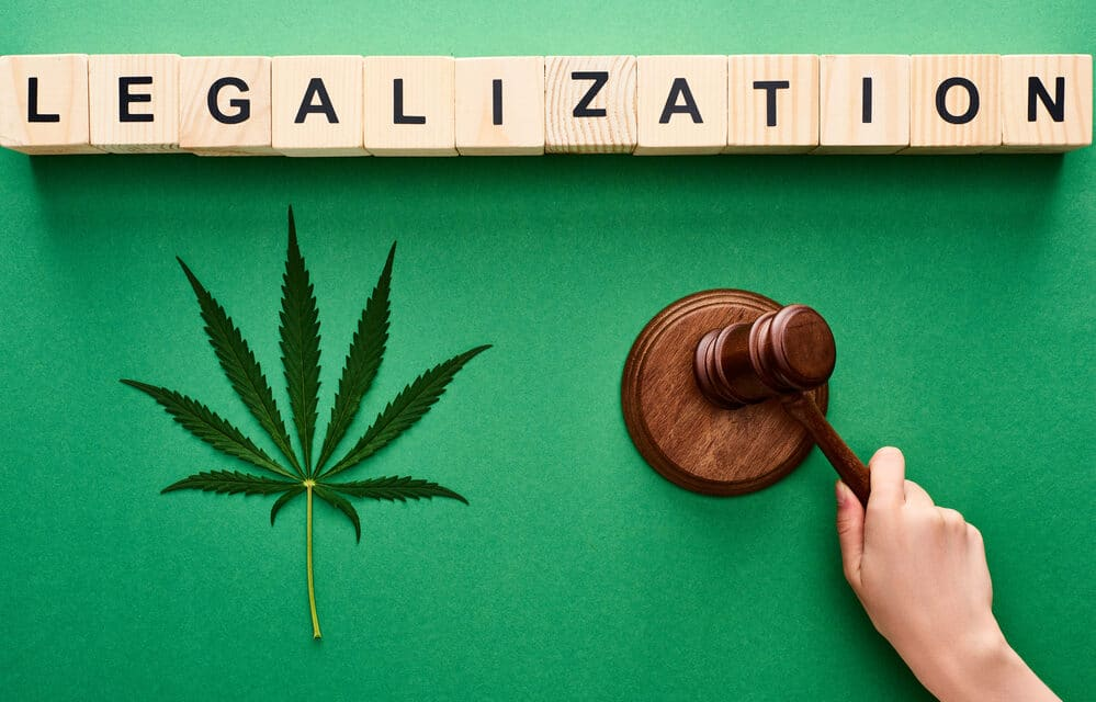 Draft Bill on Marijuana Legalization to be Released by Senate Leader Wednesday