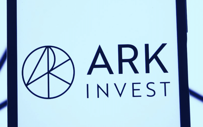 Ark Invest Gobbles Up Nearly $140-Million Worth of Palantir Shares