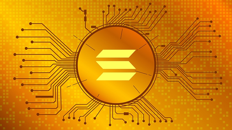 Solana Dethrones the Leading Meme Coin, DOGE to Become 7th Largest Cryptocurrency
